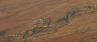ad listing Rural lifestyle property thumbnail